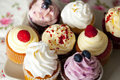 Colorful cupcakes with whipped cream and fresh berries Royalty Free Stock Photo