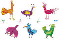 Colorful cute birds Royalty Free Stock Images