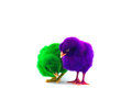 Colorful cute little baby chicken white background stock photo against Stock Photography