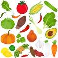 Farbistý roztomilý vektorové ikony zeleninový
