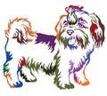 Colorful decorative standing portrait of dog shih-tzu, vector