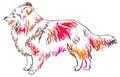 Colorful decorative standing portrait of Sheltie vector illustra