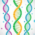 Colorful DNA Strands Stock Images