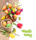 Colorful easter border with bunch of tulips and painted eggs on wood white background deep dof space for your text Royalty Free Stock Photography