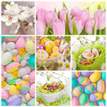 Colorful easter collage eggs flowers Stock Photo