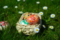 Colorful easter eggs on a basket on a green grass