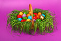 Colorful easter eggs in basket painted wicker Stock Photos