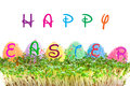 Colorful easter eggs garden cress happy easter sign Royalty Free Stock Photography