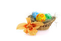 Colorful easter eggs in grass with lily flower isolated on white background Royalty Free Stock Photography