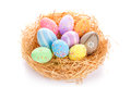 Colorful easter eggs nest over white background Stock Images