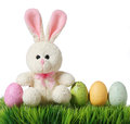 Colorful easter eggs and rabbit on grass, isolated Royalty Free Stock Photos