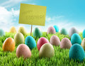 Colorful Easter eggs with sign in a field Stock Photo