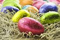 Colorful easter eggs in straw Stock Image