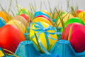 Colorful easter eggs tray grass Stock Photos
