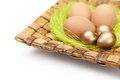 Colorful easter eggs are on wattled plate Stock Image