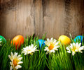 Colorful easter painted eggs in spring grass Stock Photo