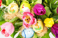 Colorful easter tulip flowers bouquet Stock Photos