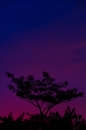 Colorful Evenning Sky (Blue) Stock Photography