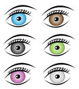 Colorful eyes set with eyelash and eyebrow on white background vector eye Royalty Free Stock Photos