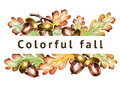 Colorful fall background. Acorns and leaves. Watercolor template