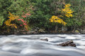Colorful fall forest on a riverside of frozen-motion river Royalty Free Stock Photo