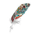 Colorful Feather  on white background colorful Royalty Free Stock Photo