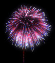 Colorful festive fireworks at night Stock Photos