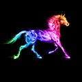 Colorful fire horse running in spectrum colors on black background Stock Photography
