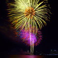 Colorful firework festival in celebration a night of city Royalty Free Stock Photos