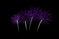 Colorful fireworks over dark sky beautiful Stock Images