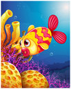 A colorful fish under the sea illustration of on white background Stock Photography