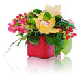 Colorful floral bouquet of roses cloves and orchids arrangement centerpiece in vase isolated on white background Stock Photo