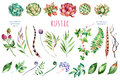 Colorful floral collection with 27 watercolor elements. Royalty Free Stock Photo
