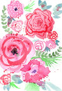 Colorful floral illustration abstract watercolor painting or red and pink flowers Stock Photos