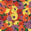 Colorful floral seamless pattern with hand drawn poppy flowers on white background. Stock vector illustration