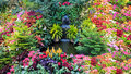 Colorful Flower Display in a Canadian Garden Royalty Free Stock Photo