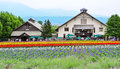 Colorful flower field and a green house in hokkaido japan Royalty Free Stock Photography