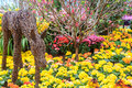 Colorful flower garden beautiful bed Royalty Free Stock Photography