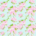Colorful flower seamless pattern background wallpaper Royalty Free Stock Photography