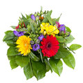 Colorful flowers bouquet  Royalty Free Stock Photo