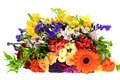 Colorful flowers bouquet isolated on white backgroundr Stock Photos