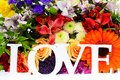 Colorful flowers bouquet isolated on white backgroundr Royalty Free Stock Image