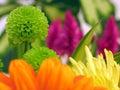 Flores en y