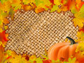 Colorful frame of fallen autumn leaves. Royalty Free Stock Image