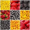 Colorful fruit background collage exotic summer sweet fruits with lemons oranges strawberries blueberries and bilberries Royalty Free Stock Photos