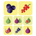 Colorful fruits and berries icons set
