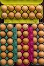 Full boxes of fresh eggs Royalty Free Stock Photo