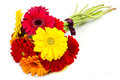 Colorful gerbera flowers bouquet a Stock Images