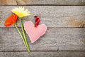 Colorful gerbera flowers and valentine s day heart toy on wooden background with copy space Stock Photography