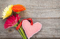 Colorful gerbera flowers and valentine s day heart toy on wooden background with copy space Royalty Free Stock Image